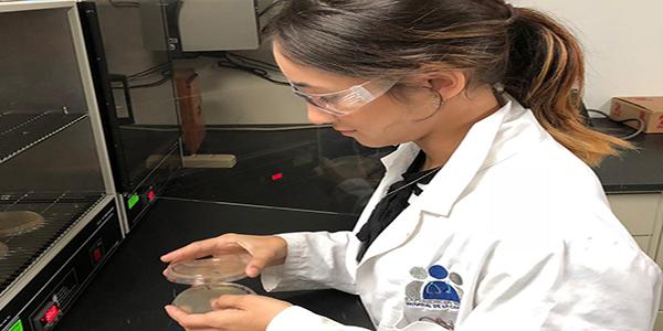 pucpr-mayaguez-estudiante-en-laboratorio